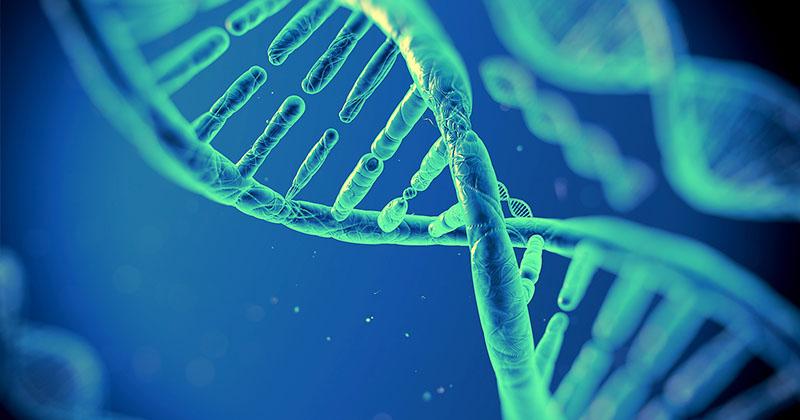 Amgen子公司deCODE與Intermountain醫療集團達成合作,將進行50萬人遺傳研究。(圖片來源:網路)