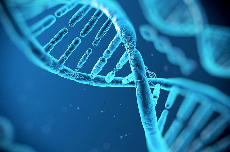 DNA_800x530