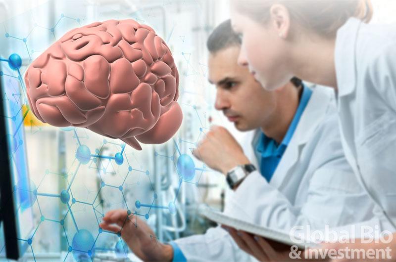 單細胞RNA定序 從「基因表現」解人類大腦演化之謎 (圖片來源:網路)