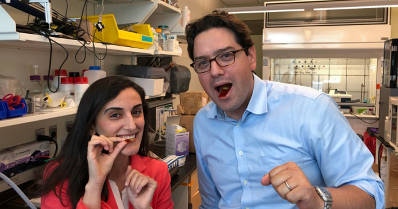 MIT媒體實驗室助理教授Canan Dagdeviren(左)、布萊根婦女醫院腸胃病學專家暨生物工程師、MIT柯克綜合癌症研究所研究員Giovanni Traverso(右),共同開發出可食用的感測器。(圖/取自MIT網站)