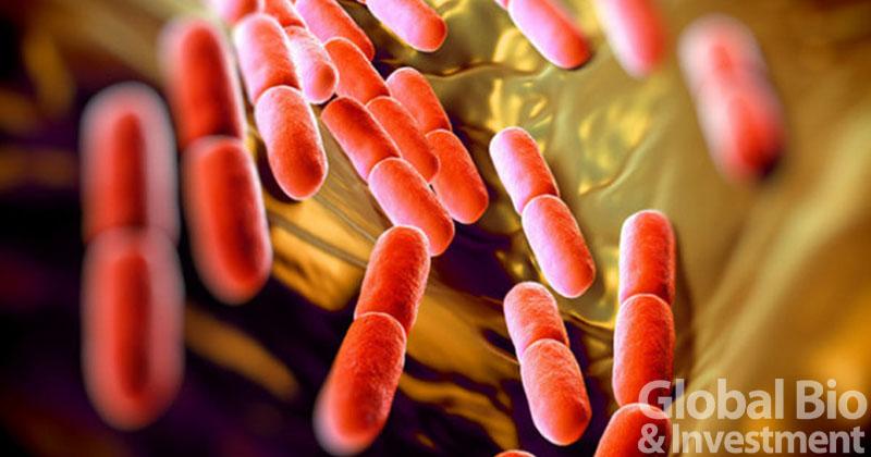 股價狂漲389%!Seres困難梭菌感染三期試驗成果積極 盼成首款微生物體口服療法 (圖片來源:網路)