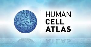 Human_Cell_Atlas_2017_Spencer_Phillips_EMBL-EBI_780x400