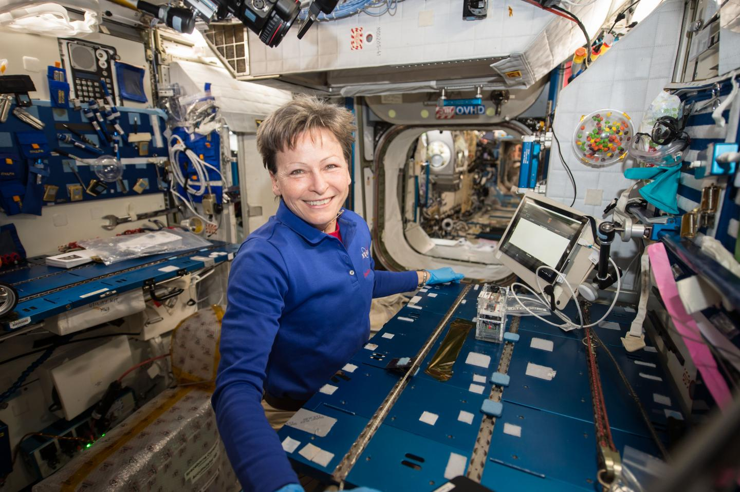NASA astronaut Peggy Whitson worked within the Microgravity Science Glovebox on the space station to transfer cells from bacterial colonies grown on petri dishes into miniature test tubes. It was the first time the process had been performed in space. Credit: NASA