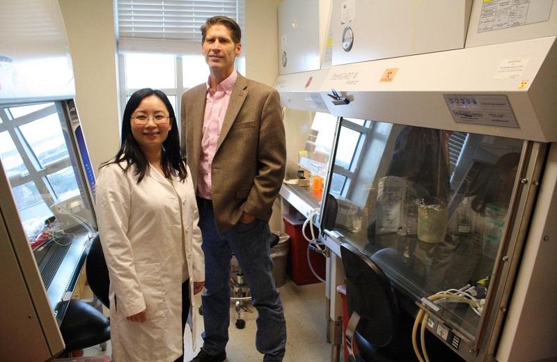Yiwen Bu博士Alan Diehl博士合作探討癌細胞如何藉由調整生理時鐘來生存。(圖片來源︰Hollings Cancer Center)