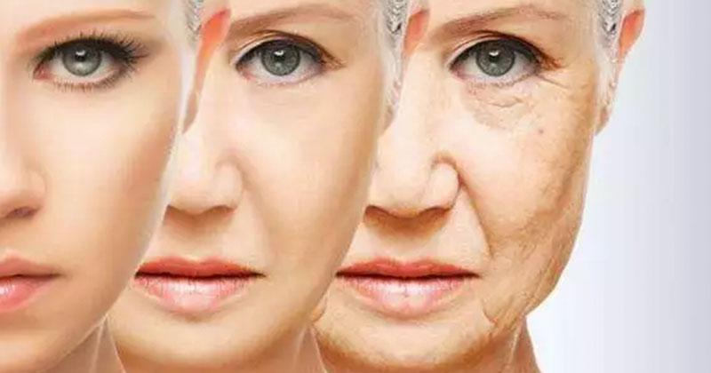 梅奧診所首次證實抗老藥可清除人體衰老細胞(圖片來源:網路)