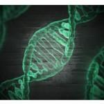 中國國家衛生健康委員會、科學技術部、工業和信息化部、國家藥品監督管理局以及國家醫藥管理局聯合制定《第一批罕見病目錄》。(圖片來源:網路)