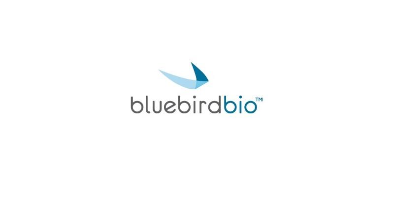 Bluebird基因療法在歐商業化生產就緒 將招募首批付費患者。(圖片來源:bluebird bio官網)