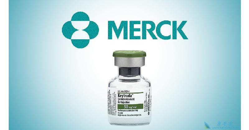 昨(美國時間1)日,默克(Merck)在2019 ASCO上發表肺癌藥Keytruda的重大成果。(圖片來源,網路)