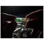 結合活細胞製成的感測器和超低功耗電子元件的生物感測膠囊。(圖片來源:網路)