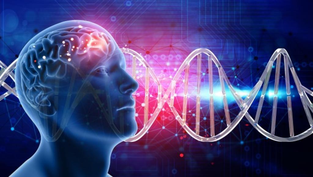發現阿茲海默症新風險基因 解密Aβ影響大於TAU蛋白!?(圖片來源:網路)