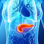 《Science》冷泉港證實 胰腺癌發展幕後操控者是CA19-9。(圖片來源:網路)