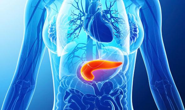 荷蘭科學家找出突破胰臟癌防線關鍵 助化療攻克「癌症之王」。(圖片來源:網路)