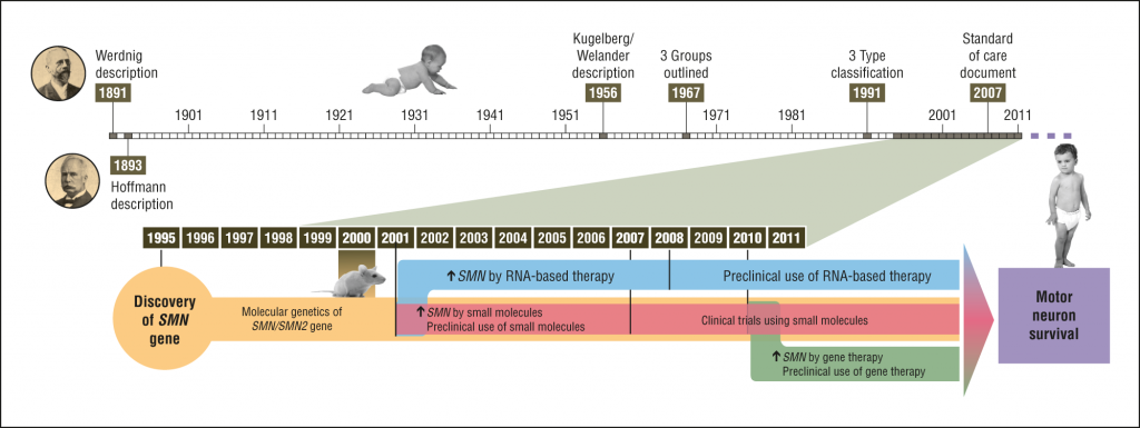 SMA的發展 (圖片來源:JAMA Neurology)