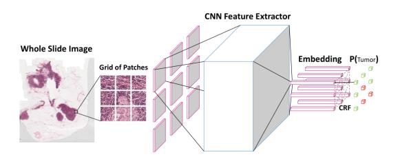 透過卷積神經網絡,在在圖片上辨識,分析每個較小的照片以及其相鄰部位。 (圖片來源:Baidu Research)