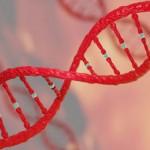 《Molecular Cell》發現Cas12a比Cas9更精準的基因編輯工具。(圖片來源:網路)