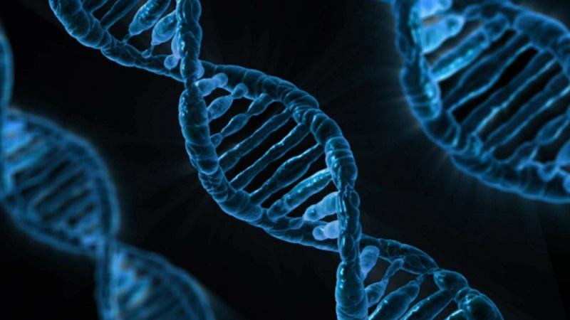 《Nature》揭露英國10萬人基因定序計畫初步成果 4個新非編碼變異造成罕病(圖片來源:Max pixel)