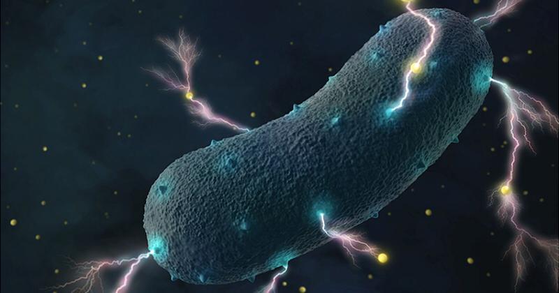 《Science》UCSD團隊發明「剪刀石頭布」基因迴路技術 解決延長抗癌藥物釋放時效。(圖片來源: Amy Cao graphic, copyright UC Berkeley)