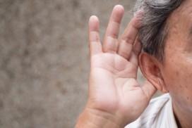 《European Journal of Neuroscience》聽力障礙有望被治療!?(圖片來源:網路)