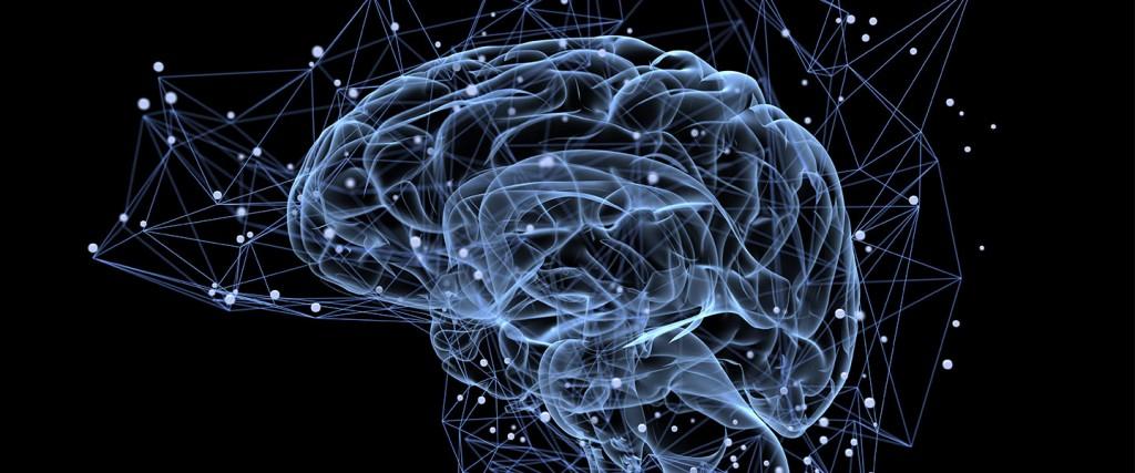 《Nature》老化讓蛋白質無法進入大腦!? 史丹福科學家揭血腦屏障老化真相 (圖片來源: 網路)