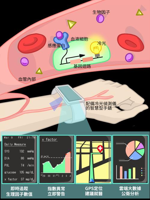 來自清華大學的跨領域團隊NTHU Formosa發明利用智慧手錶等穿戴式裝置來偵測血液內生理指數及癌症因子的方法 (圖片來源: 清華大學)