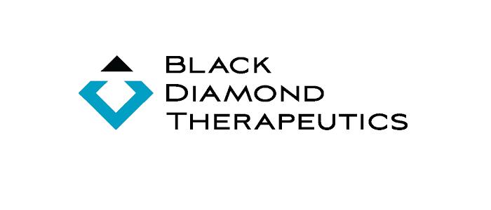 抗癌新銳公司Black Diamond強勢來襲 短短一個月完成兩輪募資。(圖片來源:網路)