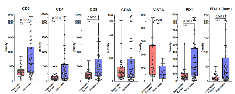 在胰腺癌與黑色素瘤中腫瘤微環境免疫浸潤的比較。(圖片來源:PNAS)