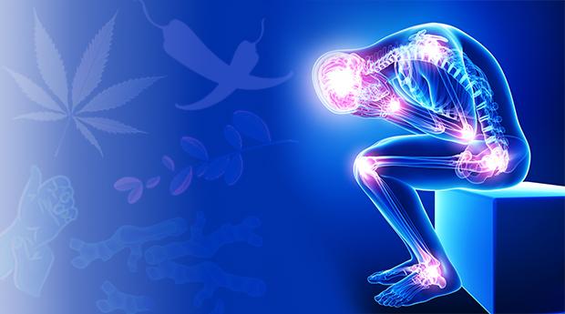 疼痛可以量化? 科學家發現疼痛相關生物標記 。(圖片來源:網路)