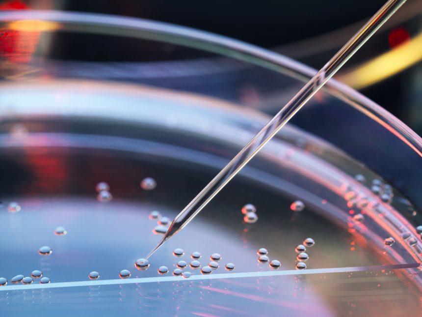 美科學家創新影像技術「SGFT」 助幹細胞分化早期結構量化 (圖片來源: 網路)