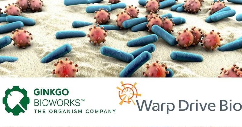 Ginkgo收購Warp Drive Bio基因探勘平台 與羅氏攜手尋找新一代抗生素(圖片來源:網路)
