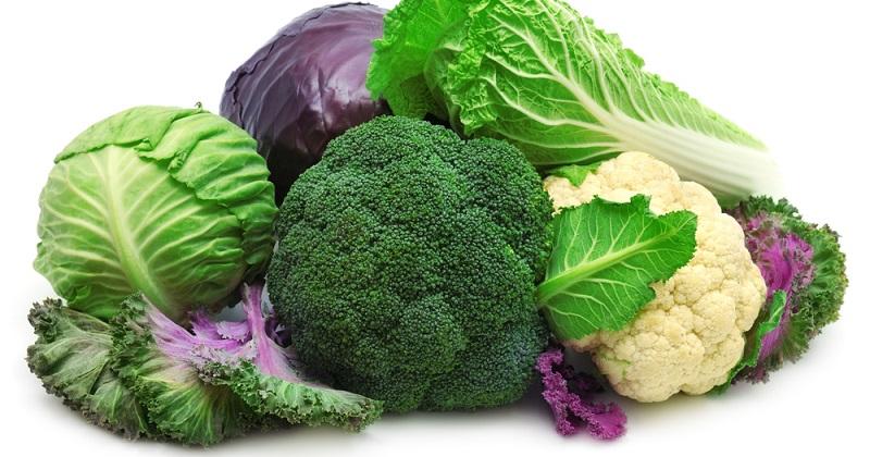 《Science》花椰菜中化合物可抑制小鼠腫瘤生長(圖片來源:網路)