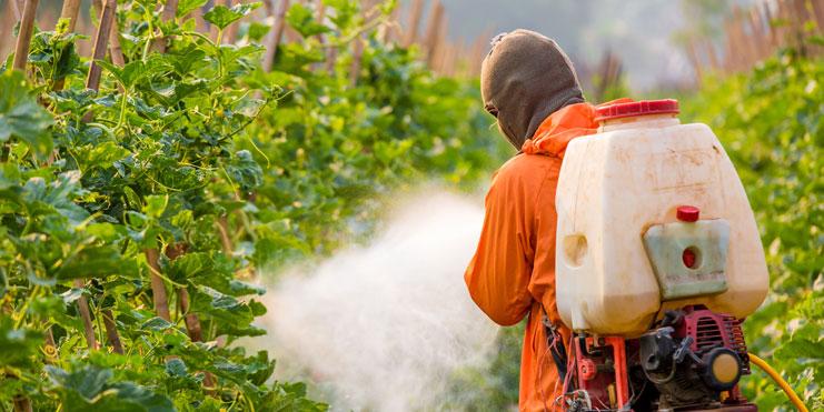 脫歐後英國政府被指責 破壞歐盟農藥規定