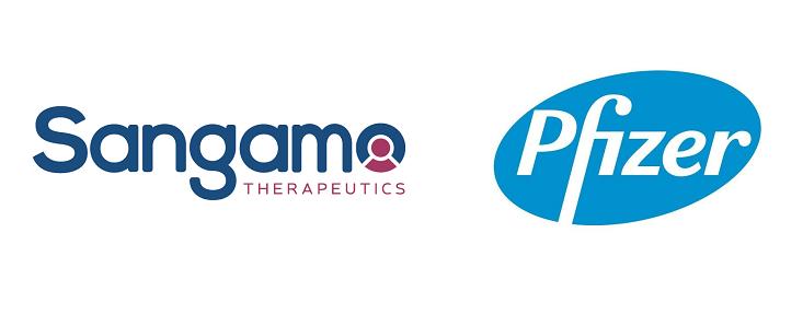 Pfizer 血友病基因療法 1/2期試驗結果佳 縮短競爭者BioMarin距離。(圖片來源:網路)