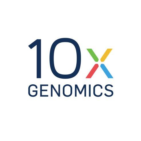 「看」見組織間基因表現! 首款高解析「空間轉錄」平台上市(圖片來源:網路)