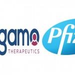 Pfizer/Sangamo公布血友病基因療法最新數據 有效長達一年以上(圖片來源:網路)