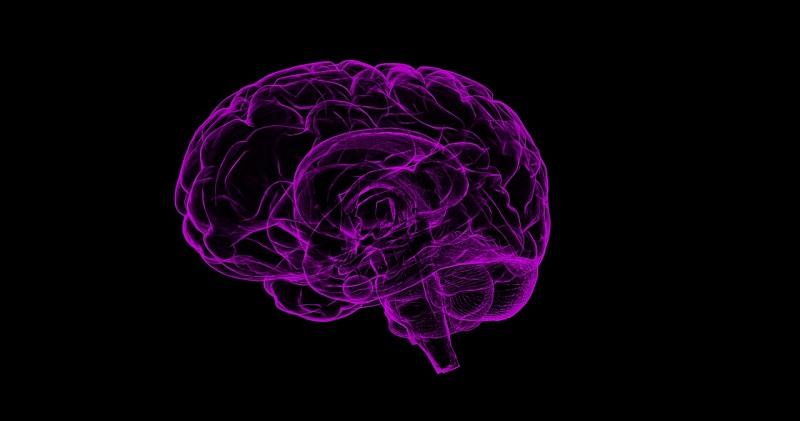 阿茲海默症新曙光!?新型小分子從源頭減少β澱粉樣蛋白沉積(圖片取自網絡)