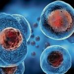 中國科技部表示血漿、幹細胞治療新型冠狀病毒重症患者明顯有效。(圖片取自網絡)