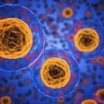 COVID-19細胞治療有解? 美BARDA點名Athersys異體細胞療法「與COVID-19高度相關」 。(圖片來源:網路)