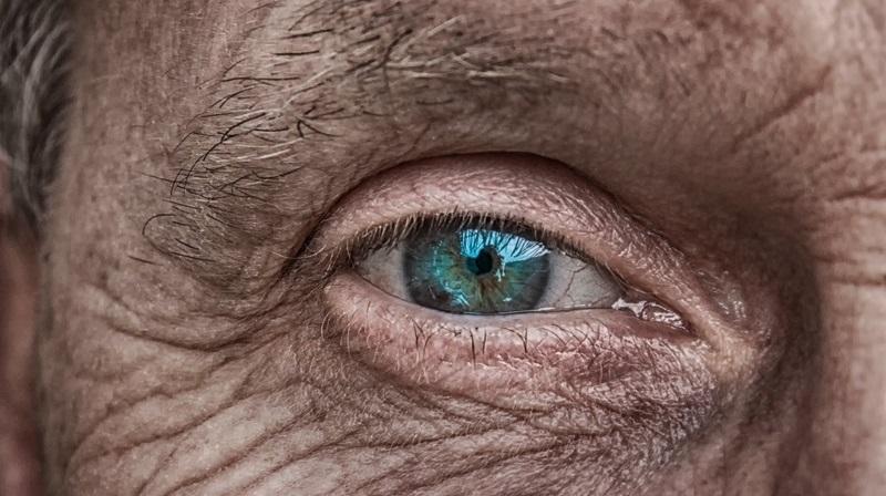 視網膜細胞移植有望治療老年性黃斑部病變,減少排斥反應。(圖片取自網絡)