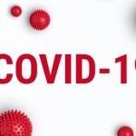 Signals Analytics推出COVID-19 Playbook分析平台加速疫苗和藥物的研發(圖片來源:網路)
