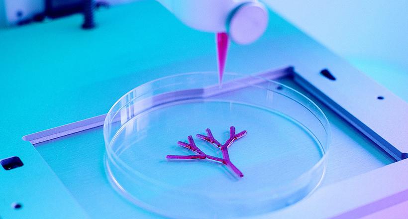 3D列印生物墨水心臟貼膜 增加受損心肌再生能力。(圖片來源:網路)
