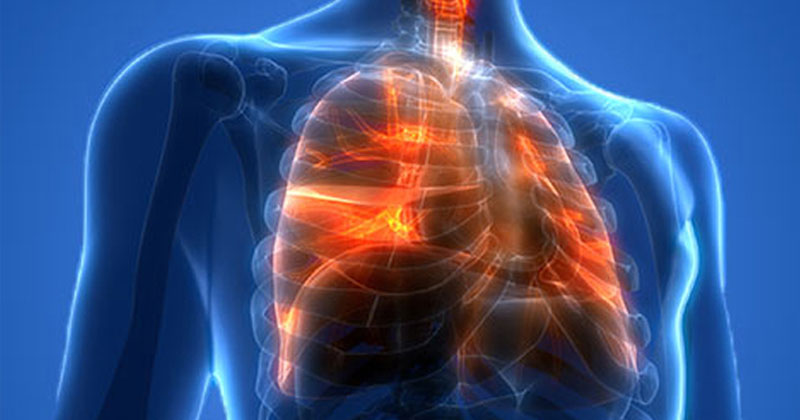 《Nature》子刊:HDAC未來有望用於治療肺部疾病(圖片來源:網路)
