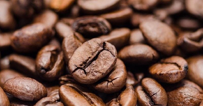 全球第一個咖啡製造N95口罩 ,日產一萬個。(圖片取自網絡)