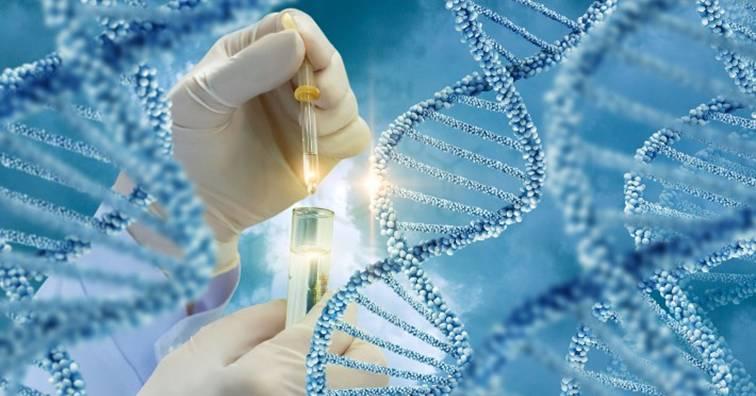 美國洛克菲勒大學研究證實遺傳基因與癌症擴散有關(圖片來源:網路)