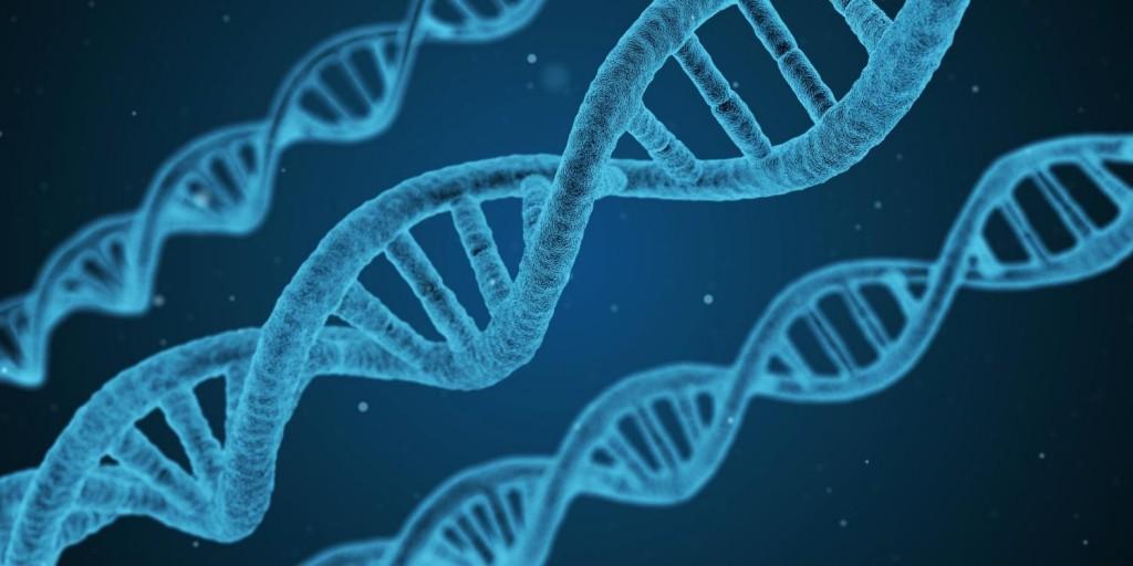 美國麻省大學發現東亞人種第二型糖尿病新基因標記(圖片來源:網路)