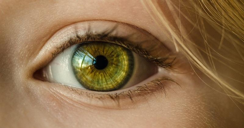 以色列CorNeat Vision創新人工眼角膜 獲批進行臨床試驗 (圖片來源:網路)