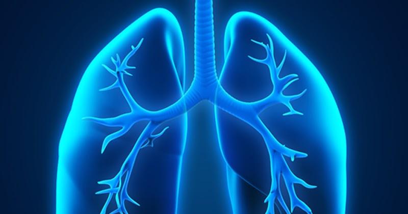 臺灣首項非吸煙肺腺癌蛋白質體學研究、中國肺腺癌蛋白質體學全圖 ,有助精準診斷。(圖片取自網絡)