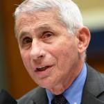 美國NIAID所長Fauci : Novavax疫苗適合老年人 三期試驗10月啟動。(圖片取自網路)