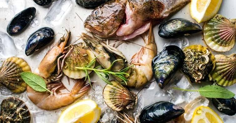 海鮮貝類經加壓處理有望改善人體維生素A、D缺乏(圖片來源:網路)