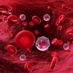 芝加哥大學研究發現,NM2C蛋白為阻斷癌細胞轉移的新標靶。(圖片取自網路)