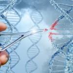 Moderna與Vertex再次合作 ,攜手開發囊性纖維化基因編輯療法。(圖片取自網絡)